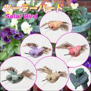 ◆可愛い鳥が花壇を飛びます♪◆ソーラーパネルで蓄電/ソーラーバード 色アソート