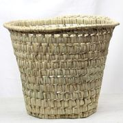 モロッコ格子水草 ゴミ箱