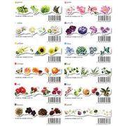 ROUNDTOP yano design series Flowers マスキングテープ 12柄