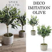 ■スパイス■ DECOR IMITATION OLIVE