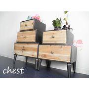 【送料無料】インテリア・家具♪2段・3段チェスト♪