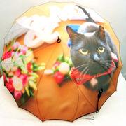 【雨傘】【長傘】1枚張り手法!サンフラワー骨お洒落さんな黒猫柄ジャンプ雨傘