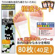 (101023)足裏樹液シート (80枚入・両足40回分) 【送料無料】※但し北海道・沖縄・離島は別途運賃あり