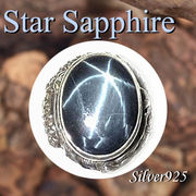 大きいサイズ / 09-98-5  ◆ Silver925 シルバー ドラゴン 龍 リング スター サファイア 19号