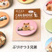 柴犬まるのコレクション缶バッジ: ぷりけつ三兄弟