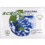 水に流せるペーパー10W(地球柄) 00000018