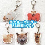 アクリルキーホルダー【柴犬】24種類アソート