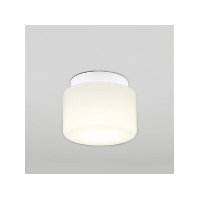 LEDバスルームライト 白熱灯40W相当 防雨・防湿型 壁面・天井面・傾斜面取付兼用 電球色タイプ