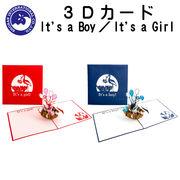 ■湘南インターナショナル■■2019SS 新作■ 【3Dカード】 It's a Boy!/It's a Girl!