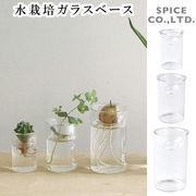 ■スパイス■ MINI BULB VASE 水栽培ガラスベース クリア