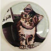 猫マグネット ピアノ Cat  piano  猫イラスト Cat magnet