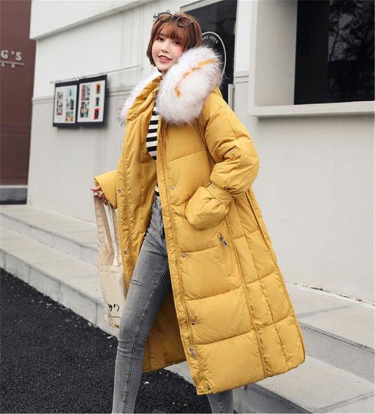 とてもファッション 秋 ゆったり 秋冬物 ロングセクション ダウンコート Aライン 毛の襟 綿入れの服