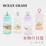 10個 ミニチャーム 海洋瓶 シェル 貝殻 ピアス イヤリング DIY アクセサリー デコパーツ