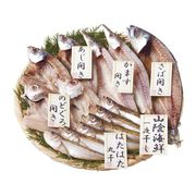 山陰 海鮮一夜干しセット 1852-35(送料無料)【直送品】【SG便】