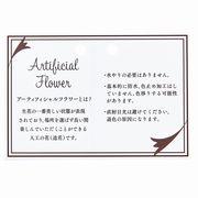 ★東京堂オリジナル★アーティフィシャルカード 包装資材