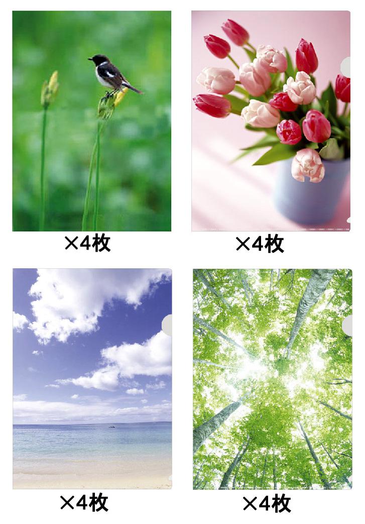 癒しデザインA4クリアファイル16枚セット