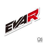 エヴァンゲリオンレーシング EVA Racing EVA-R Lサイズ キャラクターステッカー LCS1234 2020新作