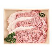 宮崎牛 サーロインステーキ 3枚 180*3(送料無料)【直送品】