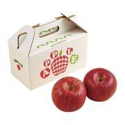 (季節限定 11月~2月上旬) りんご2玉【直送品】