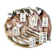 山陰海鮮一夜干しセット 1852-35(送料無料)【直送品】