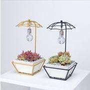 アイデア傘形電球装飾鉄芸セラミック多肉植木鉢組合せ鉄棚植木鉢セット ZCLA1790