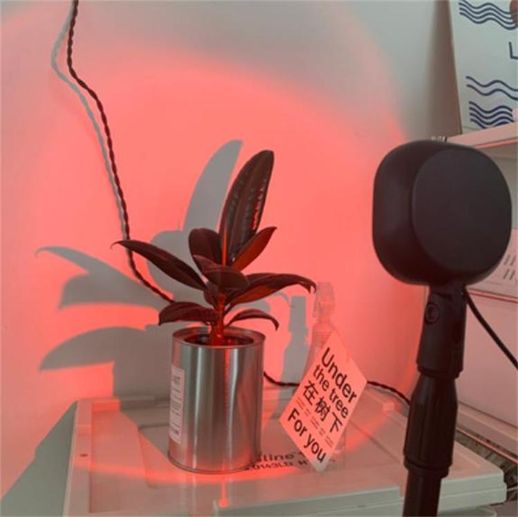 店長推薦 INSスタイル アート 夕暮れ 日没ライト アンビエンスライト 食料品店 調整可能 装飾用ライト